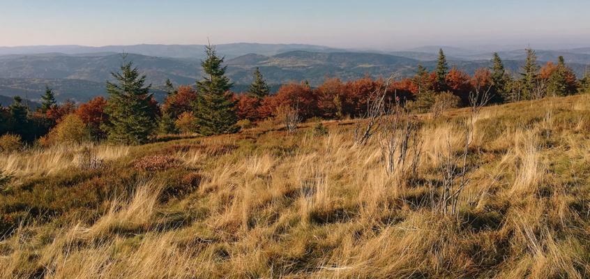 10 zdjęć, które sprawią, żepokochasz góry jesienią.