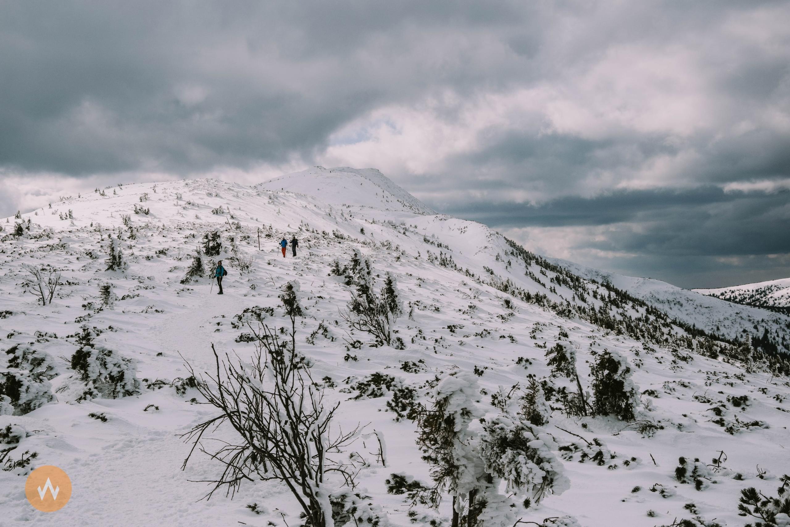 Babia Góra zimą zPrzełęczy Krowiarki – opis szlaku