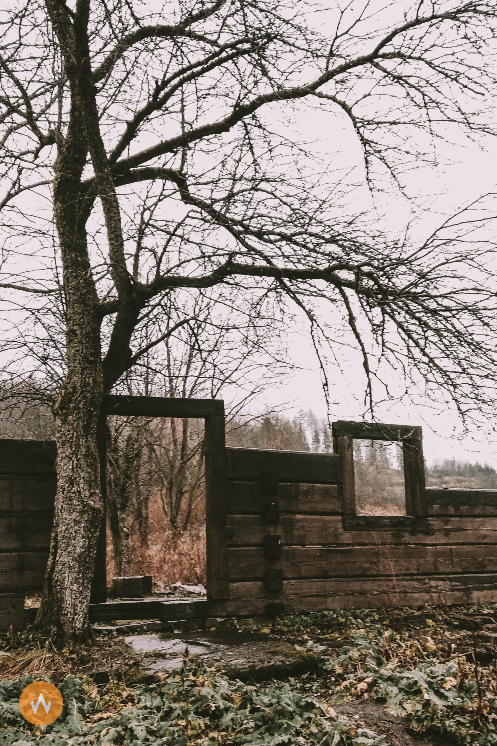 Jaworzec