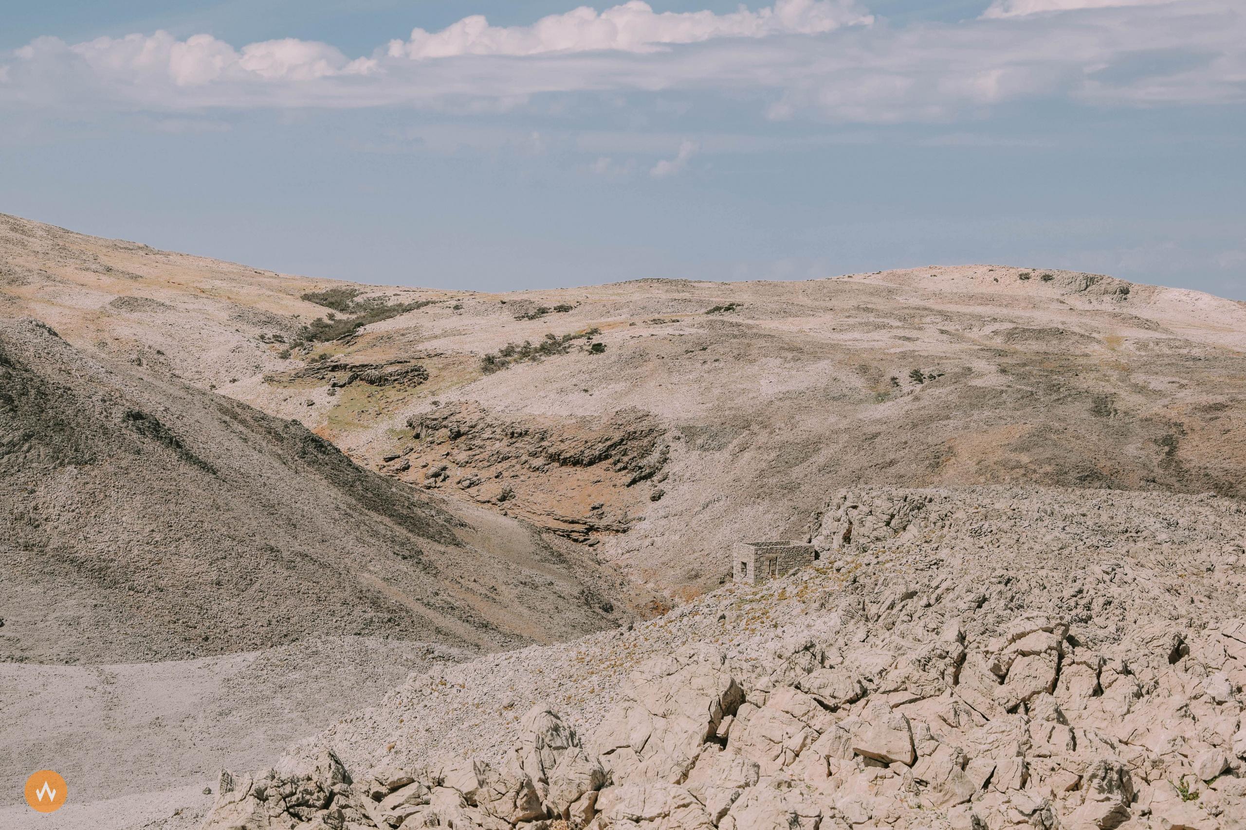 trail Life on Mars