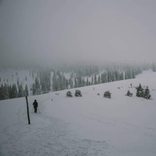 Wydawać się może, że trudne warunki zimą panują tylko w Tatrach. Ale czy na pewno? Te strome, wysokie góry zimą nie jednego śmiałka zmuszą do odpuszczenia sobie wyjścia na ich szczyty. Niejednokrotnie jednak przekonaliśmy się, że wycieczka w Beskidy zimą może być trudna i wymagająca.  ••• Najcięższe zimowe przeprawy zdarzyły nam się w Gorcach i co ciekawe, na podobnej trasie (zdjęcie jest właśnie z takiej wycieczki). Wędrówka przez obranyszlak zajęłaby nam latem 6,5h wtedy zajęła 14 godzin. O ile do Turbacza droga była udeptana tak  dalej, idąc w stronę Gorca, szlak trzeba było przecierać, a miejscami sięgał nam po uda. Mrok i sypiący intensywnie śnieg sprawiły, że w pewnym momencie nie zauważyliśmy odbicia szlaku i... Zgubiliśmy się! Na szczęście w miarę szybko zareagowaliśmy i zawróciliśmy, co jednak sprawiło, że straciliśmy bardzo dużo sił. Między innymi z tego powodu nosimy ze sobą kompas, bo jak na złość przeważnie w takich sytuacjach nie ma zasięgu w telefonie 😉 Cała ta przygoda skończyła się dobrze, poza tym też byliśmy przygotowani na to, że takie warunki mogą nas zastać. Mimo wszystko, takie zdarzenia sprawiają, że nabiera się do gór ogromnego respektu. ••• Zdarzyło wam się być w górach w tak ciężkich warunkach, że nabraliście do nich jeszcze więcej pokory?  . . . #gorce #turbacz #gorczanskiparknarodowy #23PN #parknarodowy #zparkudoparku #naszlaku #razemwgórach #zima #zimawgorach #beskidy #beskidomaniacy #wgorachjestwszystkocokocham #kochamgory #pasja #polskajestpiękna #polska🇵🇱